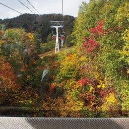 画像 ゴンドラで秋の空中散歩 札幌国際スキー場秋祭り の記事より 10つ目
