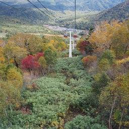 画像 ゴンドラで秋の空中散歩 札幌国際スキー場秋祭り の記事より 20つ目