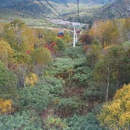 画像 ゴンドラで秋の空中散歩 札幌国際スキー場秋祭り の記事より 19つ目