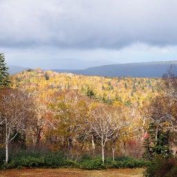 画像 ゴンドラで秋の空中散歩 札幌国際スキー場秋祭り の記事より 17つ目