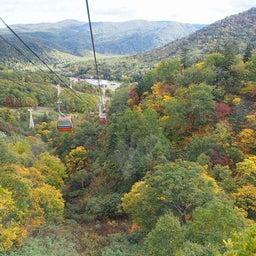 画像 ゴンドラで秋の空中散歩 札幌国際スキー場秋祭り の記事より 21つ目