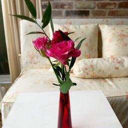 画像 お花のある生活〜bloomeelife〜46 の記事より 1つ目