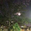 月夜の伊丹のウォーキング