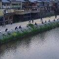 【15日目】あたらしい鴨川のスタイルを考える