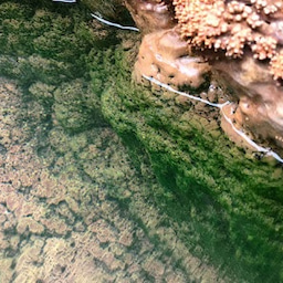 画像 定山渓の奥にある、人気の豊平峡温泉へ行こう!! の記事より 7つ目