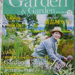 画像 咲きはじめたクロードモネ♪「ガーデン&ガーデン」発売 の記事より 1つ目