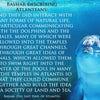 バシャール:アトランティス人は イルカやクジラたちと一緒に集う機会を持っていましたの画像