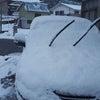 平成最後の雪であってほしい~^^;;の画像