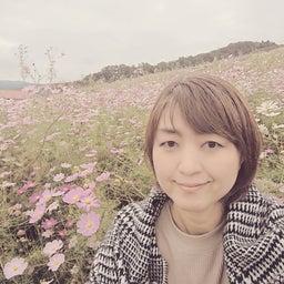 画像 富山となみ夢の平コスモスウォッチング の記事より 1つ目