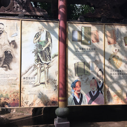 画像 重慶 中国民間医薬博物館 の記事より 15つ目