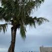 グアム 今日の天気と台湾旅行Day1-2