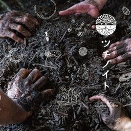 画像 デザートに生葉を使いたい 人と自然に優しい糸満市産モリンガとは(沖縄県) の記事より 11つ目