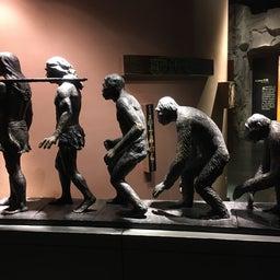 画像 重慶中国三峡博物館 の記事より 27つ目