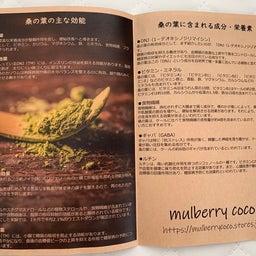 画像 桑の葉 mulberry coco の記事より 3つ目