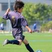 6年全日本少年サッカー大会 埼玉県大会