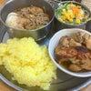【カレーの店 ガン爺】《虎ノ門・昼》バラきのこカレー+チキンマサラの画像
