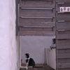 志摩地中海村での猫との出逢い(三重県志摩市)の画像