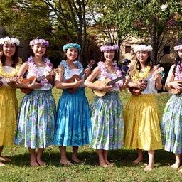 画像 関西学院大学三田キャンパスの大学祭でフラサークルのステージを取材! の記事より 2つ目