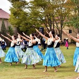 画像 関西学院大学三田キャンパスの大学祭でフラサークルのステージを取材! の記事より 13つ目