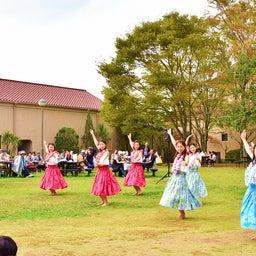 画像 関西学院大学三田キャンパスの大学祭でフラサークルのステージを取材! の記事より 9つ目
