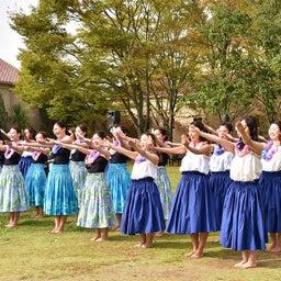 画像 関西学院大学三田キャンパスの大学祭でフラサークルのステージを取材! の記事より 16つ目