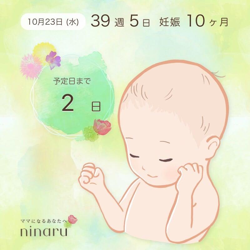 張り ヶ月 お腹 妊娠 5 の