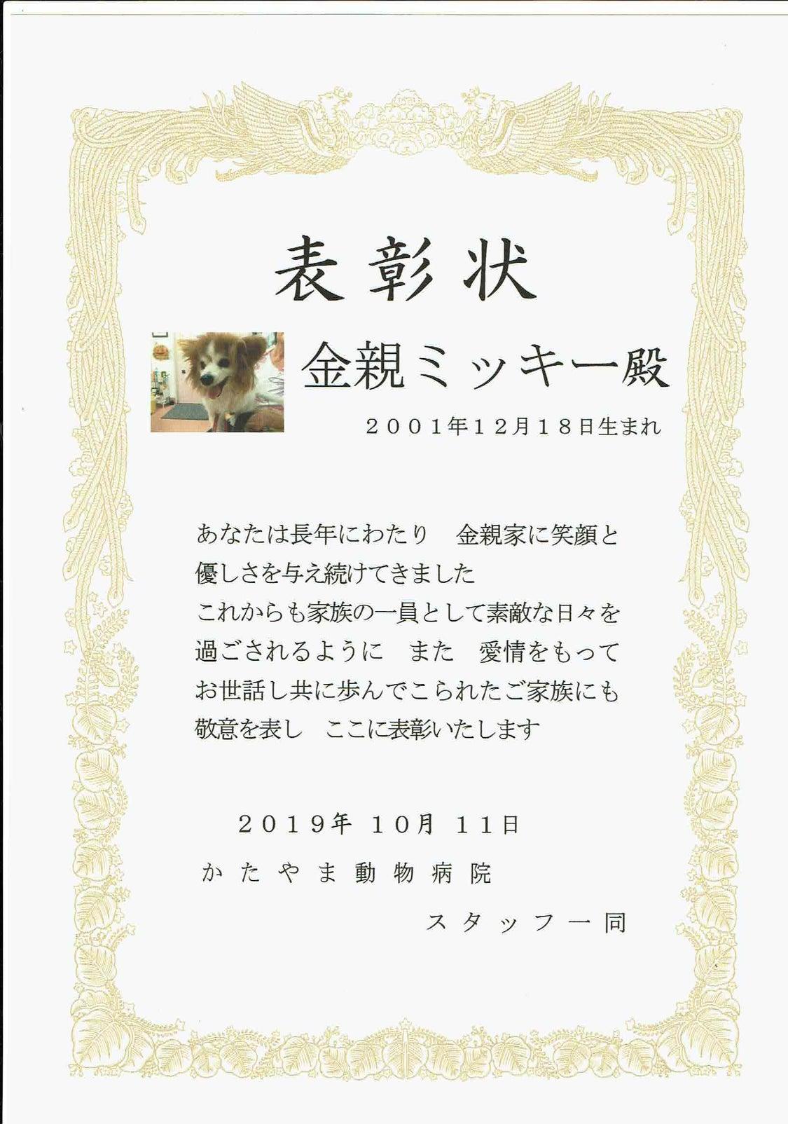 10月のたくお表彰は、金親ミッキーちゃんに受けていただきました。の記事より
