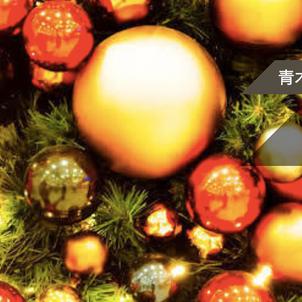12/12 青木山荘のクリスマスパーティの画像