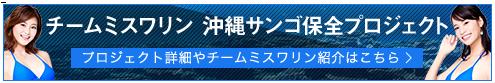 ミスワリン活動紹介