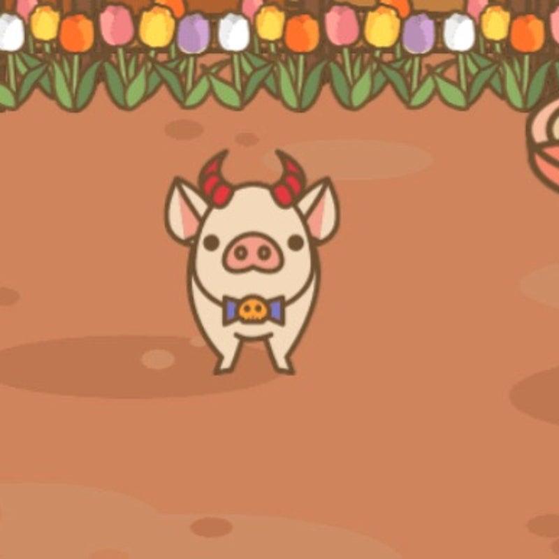 養豚場mix 伝承級 謎かけ