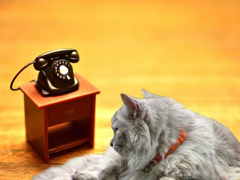 音 黒 電話 着信