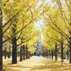 【季節のエステ】秋☆角質ケア&保湿フェイシャルの画像