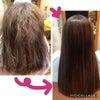 半年ぶりの毛質改善プラチナ縮毛矯正♪の画像