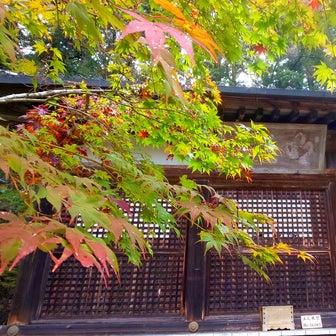 京都~神護寺。