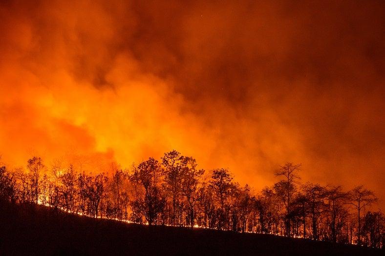 PM2.5を放出する山火事