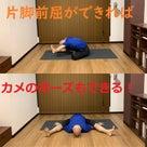 前屈ができない人がカメのポーズまで!?骨盤が倒せない人のための必勝練習法 の記事より