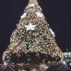 クリスマスに、彼氏よりも優先した活動。の画像