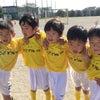 11月9日(土) 育成1~2年生、キッズ年長 練習試合 vs.レガーラ・ストゥレガーレの画像