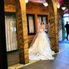 仙台婚活!ご結婚おめでとうございます!の画像