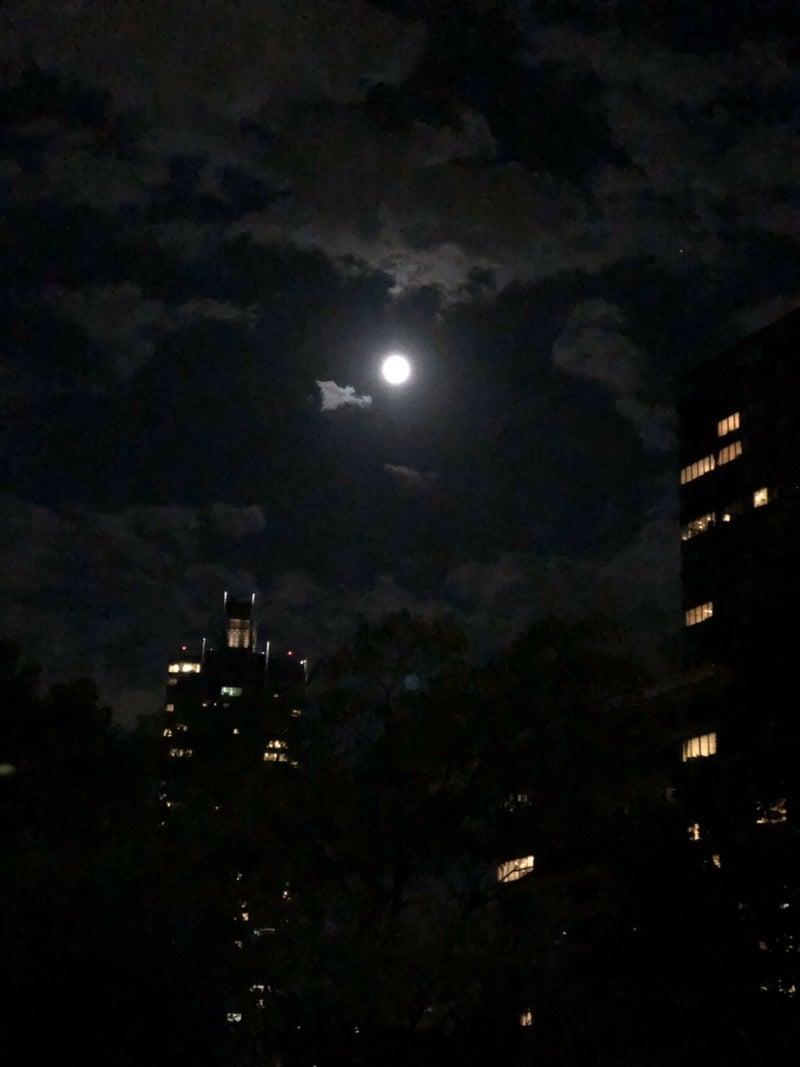 です 綺麗 月 ね が