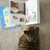 韓国版『猫がよろこぶ掃除・片付け』が出版されましたの画像