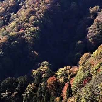 ホハレ峠へ③(揖斐郡揖斐川町)
