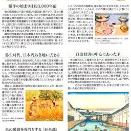 画像 【米の日本史と雑学】稲作の始まりは縄文時代! の記事より 2つ目