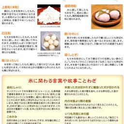 画像 【米の日本史と雑学】稲作の始まりは縄文時代! の記事より 10つ目