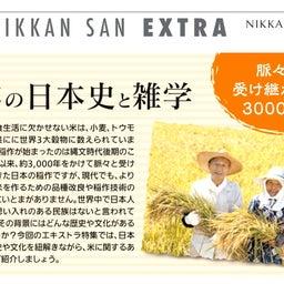 画像 【米の日本史と雑学】稲作の始まりは縄文時代! の記事より 1つ目