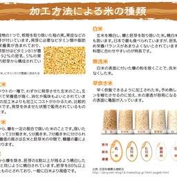 画像 【米の日本史と雑学】稲作の始まりは縄文時代! の記事より 9つ目