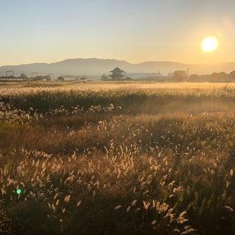 朝もやの草原と朱雀門