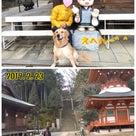 1,284、過激でHENTAIな企画の(笑)下見を兼ねて大阪から和歌山へ♪(11/16)の記事より