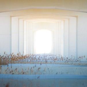 人生の扉。の画像