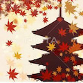 奈良盆地も紅葉の始まり、19(火) ✧宇陀市✧桜井市 20(水) ✧天理市